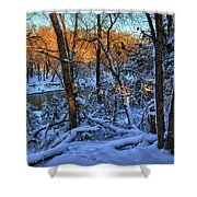 Late Afternoon Winter Light Shower Curtain