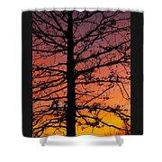 Late Autumn Sunset Shower Curtain