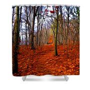 Late Fall In The Woods Shower Curtain