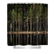 Late Loons Shower Curtain