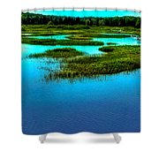 Late May On The Moose River Shower Curtain