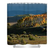 Late Stand Shower Curtain