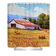 Late Summer Hay Shower Curtain