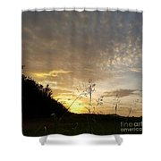 Late Summer Morning Shower Curtain