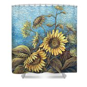 Late Sunflowers  Shower Curtain
