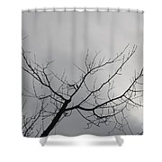 Late Winter Clouds Shower Curtain