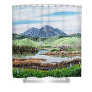 Late Winter In California Shower Curtain