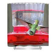 Later Hummingbird Shower Curtain