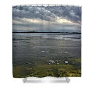 Later Winter Ice Shower Curtain