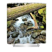 Laughingwater Creek Shower Curtain