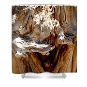 Laughing Tree Shower Curtain