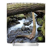 Laughingwater Creek Under Log Shower Curtain