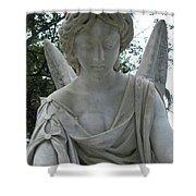Laurel Grove Angel #1 Shower Curtain