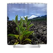Lava And Villa Rica Volcano Shower Curtain