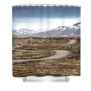 Lava Field In Iceland Shower Curtain