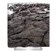 Lava Rock Island Shower Curtain