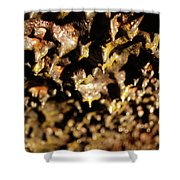 Lava Tube Cave Shower Curtain