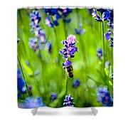 Lavander Flowers With Bee In Lavender Field Macro Artmif Shower Curtain