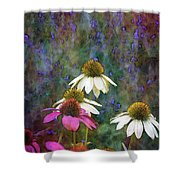 Lavender And Cones 1636 Idp_2 Shower Curtain