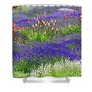 Lavender And Flowers Oh My Shower Curtain