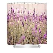 Lavender Blossom Shower Curtain