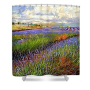 Lavender Field Shower Curtain by David Stribbling