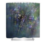 Lavender Field II Shower Curtain