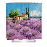 Lavender Fields In Provence Shower Curtain