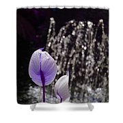 Lavender Flower At Fountain Shower Curtain