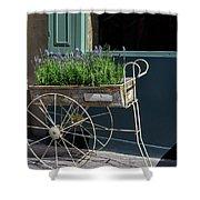Lavender Flower Cart In Montmarte Paris Shower Curtain