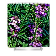 Verbena At Pilgrim Place In Claremont-california   Shower Curtain