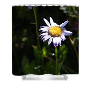 Lavender Friends Shower Curtain