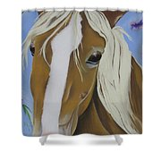Lavender Horse Shower Curtain