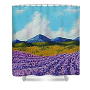 Lavender In Provence Shower Curtain