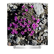 Lavender In The Rocks Shower Curtain