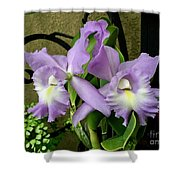 Lavender Orchids Shower Curtain