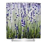 Lavender Patterns Shower Curtain