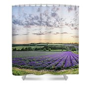 Lavender Sunset Panorama Shower Curtain