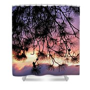 Lavender Sunset Shower Curtain