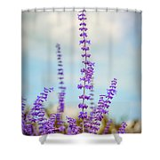 Lavender To The Sky Shower Curtain