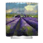 Lavenders Of South Shower Curtain