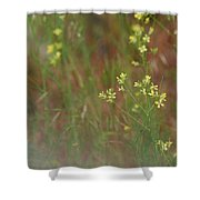 Lay In The Meadow Shower Curtain