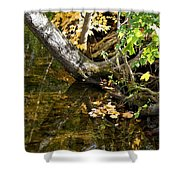 Layered Reflections Shower Curtain