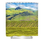 Layers Shower Curtain