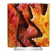 Layers Of Shades Of Autumn Shower Curtain