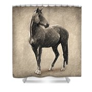 Le Cheval Shower Curtain