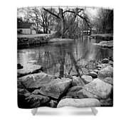Le Tort Reflection Shower Curtain