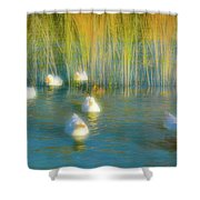 Lead Me Gently Home Shower Curtain