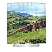 Leader Road View Shower Curtain