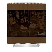 Leading Shower Curtain